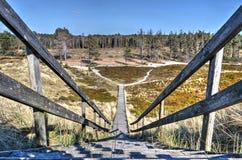 Treppenhaus und Bohlenbrücke auf Amrum lizenzfreie stockfotografie