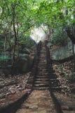 Treppenhaus zum Pidurangala-Felsen, Sri Lanka stockbilder