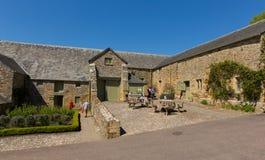 Trerice议院Newquay康沃尔郡英国英国美丽的伊丽莎白女王的庄园住宅和庭院在晴朗的春天风化 免版税库存照片
