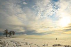 Tres árboles de abedul en la izquierda en el fondo de un campo enorme en la nieve Imagenes de archivo