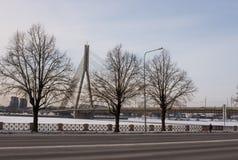 Tres árboles y el puente de Vansu en Riga imagenes de archivo