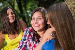 Tres amigas que se divierten en pila del heno Foto de archivo
