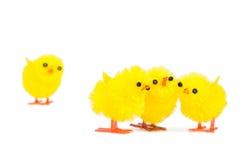 Tres amigos del polluelo que no hacen caso del forastero pobre del polluelo Foto de archivo libre de regalías