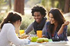 Tres amigos femeninos que hablan en una mesa de picnic imagenes de archivo