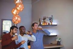 Tres amigos que beben la cerveza mientras que mira el partido Fotografía de archivo libre de regalías