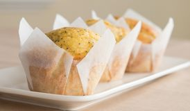 Tres anaranjados y Poppy Seed Muffins en la placa blanca imágenes de archivo libres de regalías
