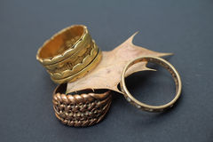Tres anillos en Holly Leaf Fotos de archivo libres de regalías