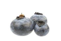 Tres arándanos adornados aislados en blanco Imagen de archivo