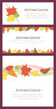 Tres Autumn Backgrounds con Autumn Leaves dibujado mano Imagenes de archivo