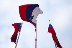 Tres banderas de Eslovenia que renuncian en el aire con un fondo del cielo nublado Fotos de archivo