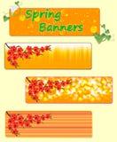 Tres banderas de la primavera con las flores de la primavera Imagen de archivo