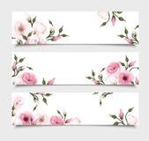 Tres banderas del vector con las flores rosadas del lisianthus Imagen de archivo libre de regalías