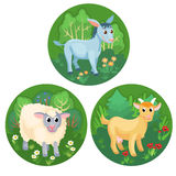Tres banderas redondas con los animales del campo Imagen de archivo libre de regalías