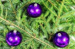 Tres bolas púrpuras de la Navidad Fotografía de archivo
