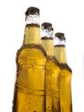 Tres botellas de cerveza con gotas del agua Fotografía de archivo