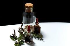 Tres botellas de cristal con los extractos herbarios y las hierbas secadas del ab Fotos de archivo libres de regalías