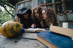 Tres brujas del vintage realizan ritual mágico Imágenes de archivo libres de regalías