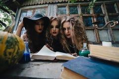 Tres brujas del vintage realizan ritual mágico Fotografía de archivo