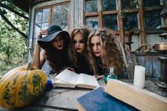 Tres brujas del vintage realizan ritual mágico Imagen de archivo