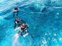 Tres buceadores subacuáticos en trajes negros del buceo con escafandra, un hombre y una mujer con las botellas de oxígeno se hund fotografía de archivo libre de regalías