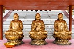 Tres Buddhas de oro asentado en la posición de loto Imágenes de archivo libres de regalías