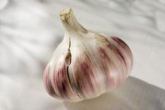 Tres bulbos de ajo en un fondo ligero Primer 1 imágenes de archivo libres de regalías