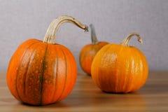 Tres calabazas anaranjadas Imagen de archivo libre de regalías