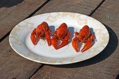 Tres cangrejos hervidos rojos. Fotografía de archivo