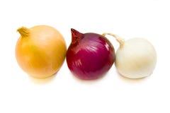 Tres cebollas coloreadas en el fondo blanco. Imagen de archivo