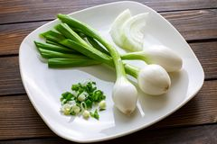 Tres cebollas mexicanas grandes que son las cebollas verdes que se han permitido crecer más grandes en una placa blanca con un ci fotografía de archivo