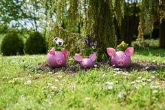 Tres cerdos imagen de archivo libre de regalías