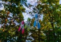 Tres clavijas de ropa multicoloras atadas a una cuerda larga en el patio foto de archivo