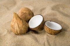 Tres cocos en la arena Imagen de archivo libre de regalías
