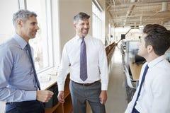 Tres colegas masculinos del negocio que hablan en el trabajo, cierre para arriba fotos de archivo libres de regalías