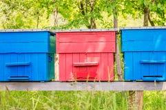 Tres colmenas coloridas Foto de archivo libre de regalías