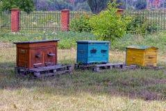 Tres colmenas de la abeja en un colmenar en un verano verde cultivan un huerto Fotografía de archivo