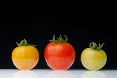 Tres colores del tomate de cereza Fotografía de archivo libre de regalías