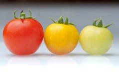 Tres colores del tomate de cereza Fotos de archivo