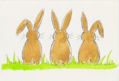 Tres conejitos que se sientan en la hierba Imagenes de archivo