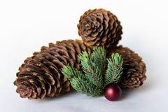 Tres conos del pino con la bola roja Foto de archivo