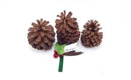 Tres conos del pino con la Navidad le agradecen marcar con etiqueta Foto de archivo