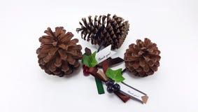 Tres conos del pino con la Navidad le agradecen marcar con etiqueta Imagen de archivo