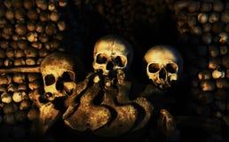 Tres cráneos humanos Foto de archivo