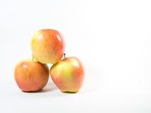 Tres de manzanas reales de la gala Foto de archivo libre de regalías