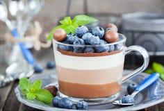 Tres deliciosos acodaron el postre del mousse de chocolate, ingenio devorated imagen de archivo