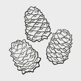 Tres diversos conos del cedro conjunto Dibujo lineal stock de ilustración