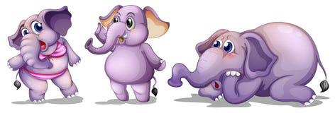 Tres elefantes stock de ilustración