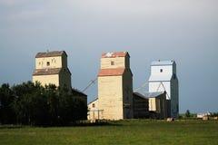 Tres elevadores de grano de la pradera Fotografía de archivo libre de regalías