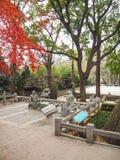Tres esculturas de piedra del taoist en el patio del templo de Taiqing Fotografía de archivo