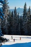 Tres esquiadores van abajo de la ruta de la estación de esquí entre bosque poderoso imagen de archivo